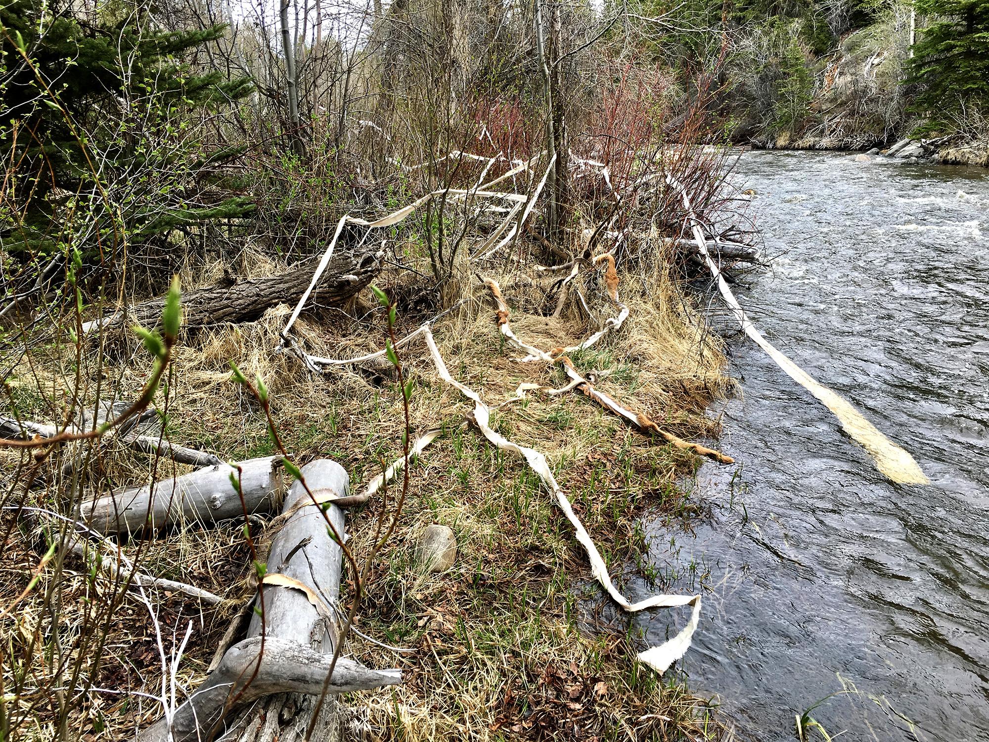 Rebecca Schultz.Brush Creek Installation.jpg