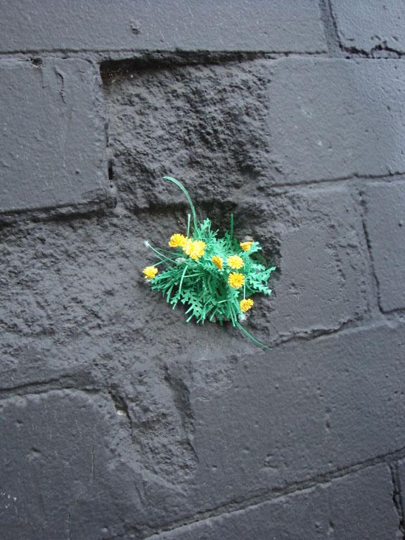 dandelion detail.jpg