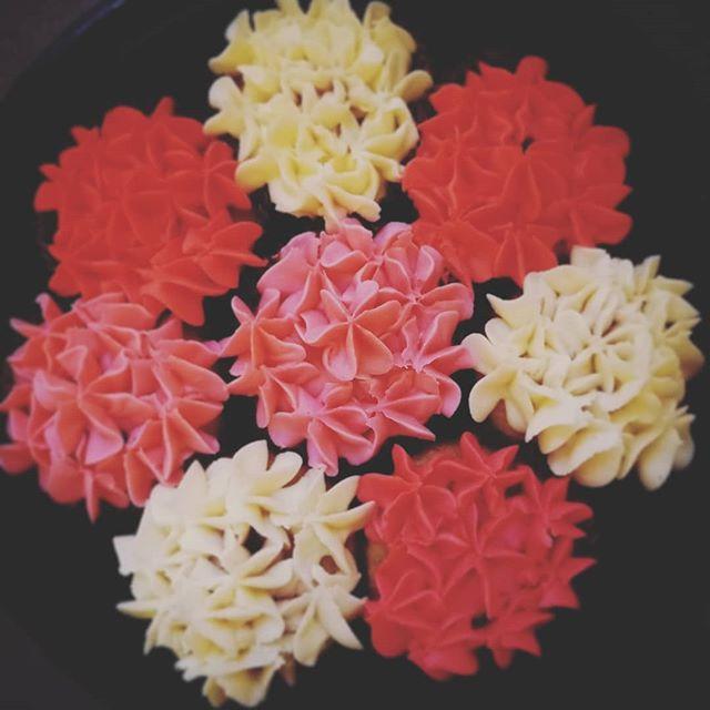 Gluten free hydrangea cupcakes  #chicagocustomcakes #glutenfree #glutenfreerecipes #nogluten #gf #gfbaking #glutenfreebaking #glutenfreedessert #hydrangea #cupcakes #chicagofood #gfcupcakes #foodinsta #instafood #vanilla #buttercreamflowers #frosting #party #allergyfriendly #cakes #chicagobaker #glutenfreechicago #yum #sogood