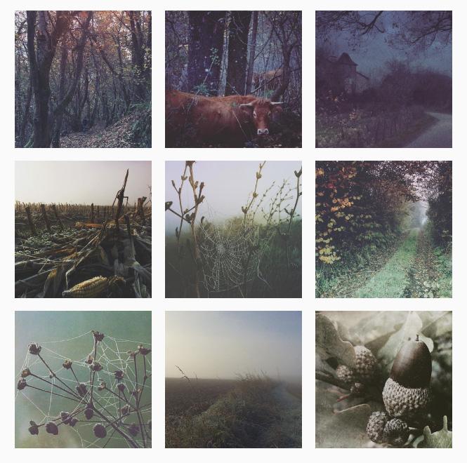 instagram-branding.jpg