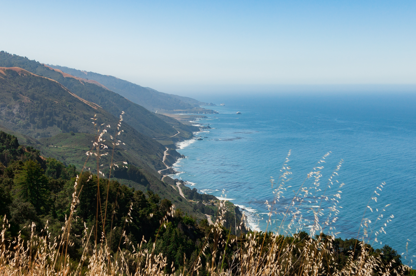 Overall, a very enjoyable hike. I would definitely do it if you choose to go backpacking in Big Sur or anywhere along the California central coast - we're definitely going to do it again in the future with more people.