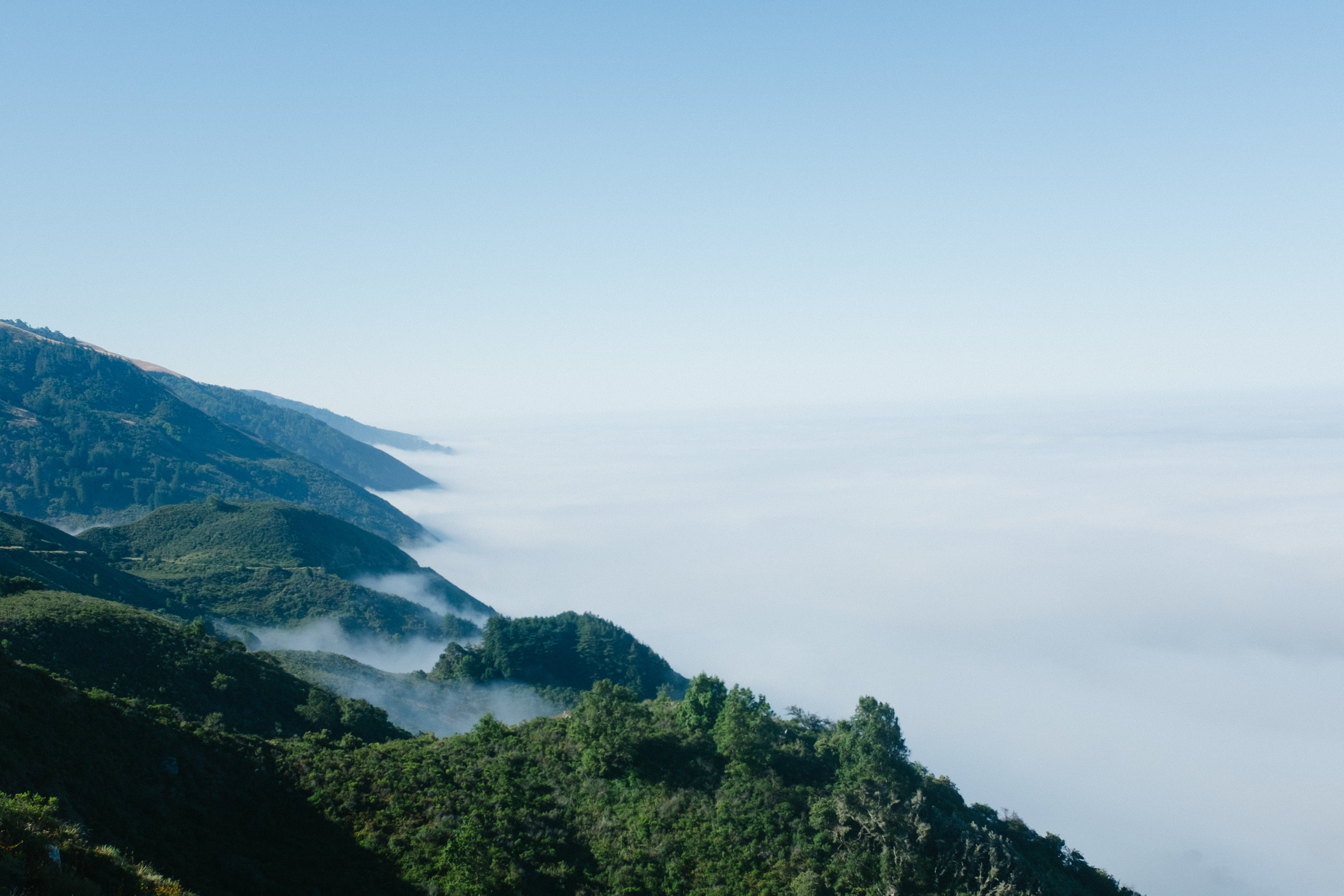 Overlooking the coast/marine layer. The fog lasted the first mile or so which was great - it's my favorite type of weather to hike in.