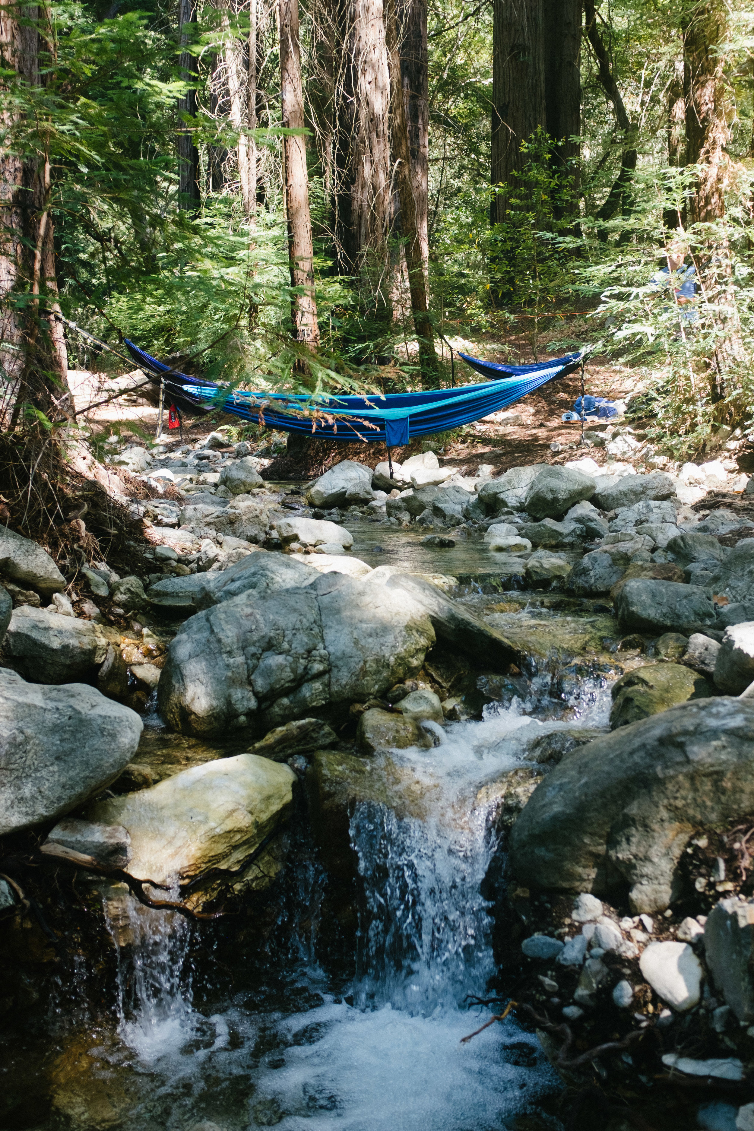 Our hammock setup/campsite. The weather was overall really great for hammocking - 70s during the day in the shade and 60s at night (I didn't even use a sleeping pad).