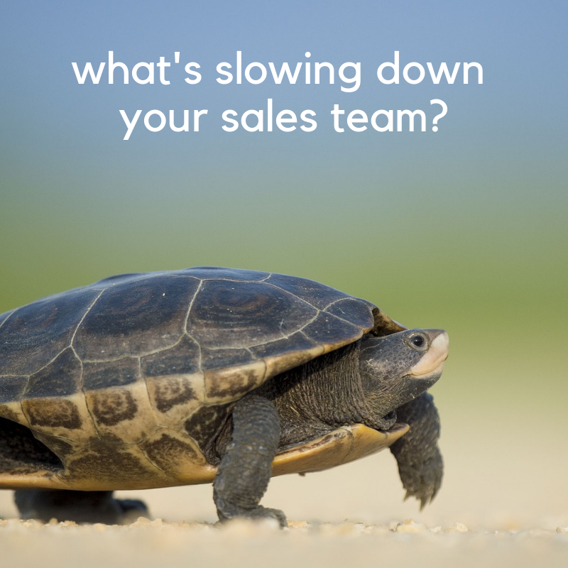 what is slowing down your sales team_ (1).png