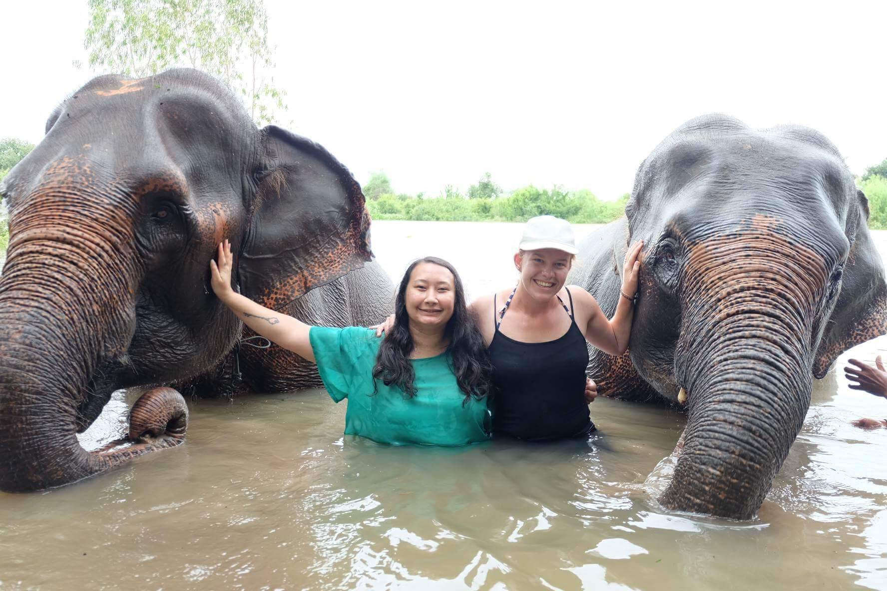 volunteer elephant village.JPG