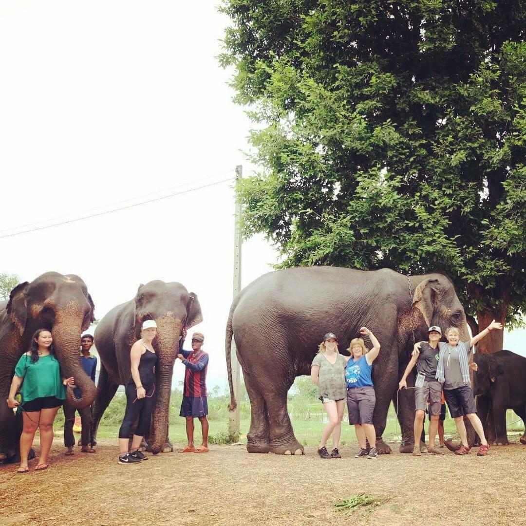 bamboo elephant village.JPG