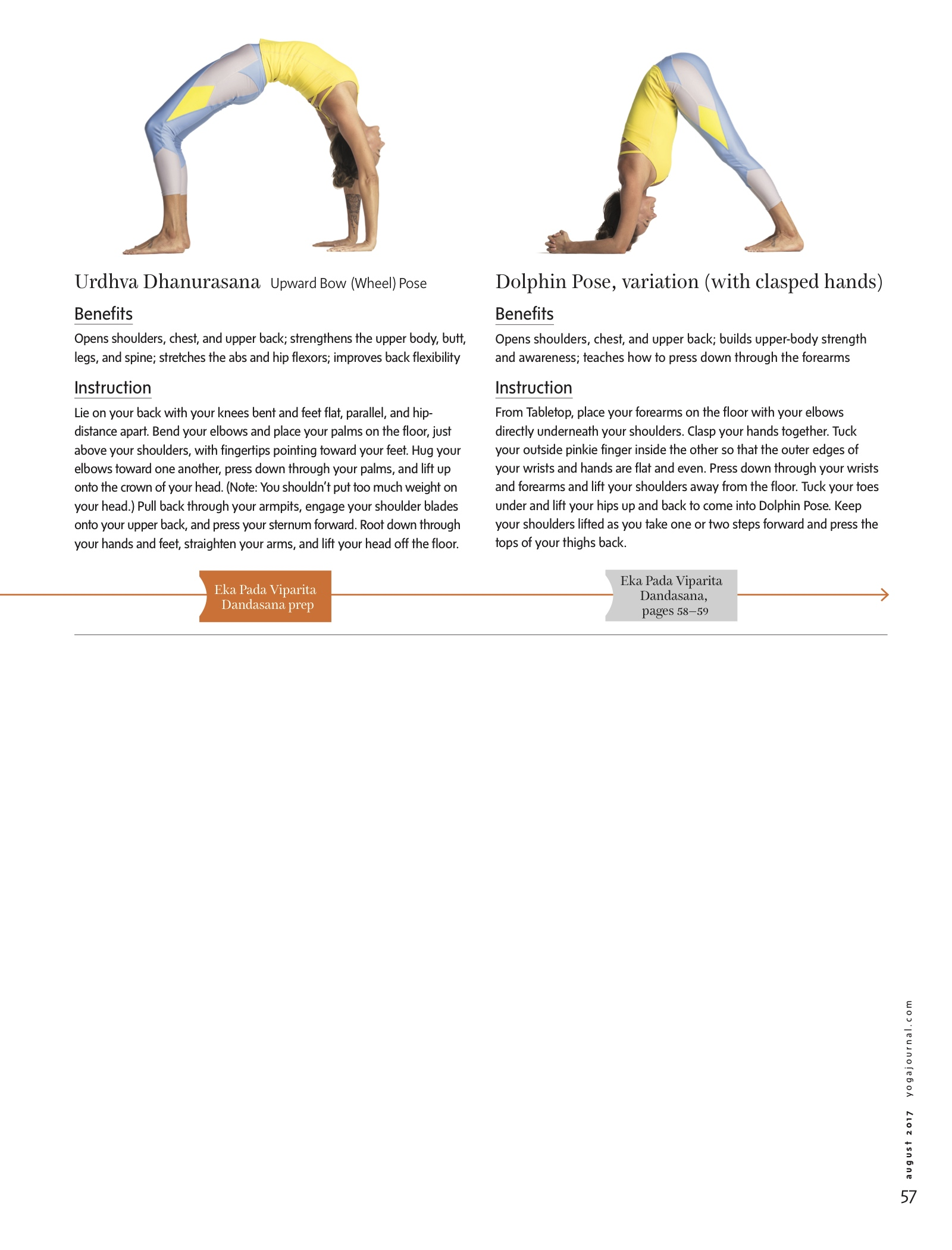 Yogapedia_291 copy.jpg