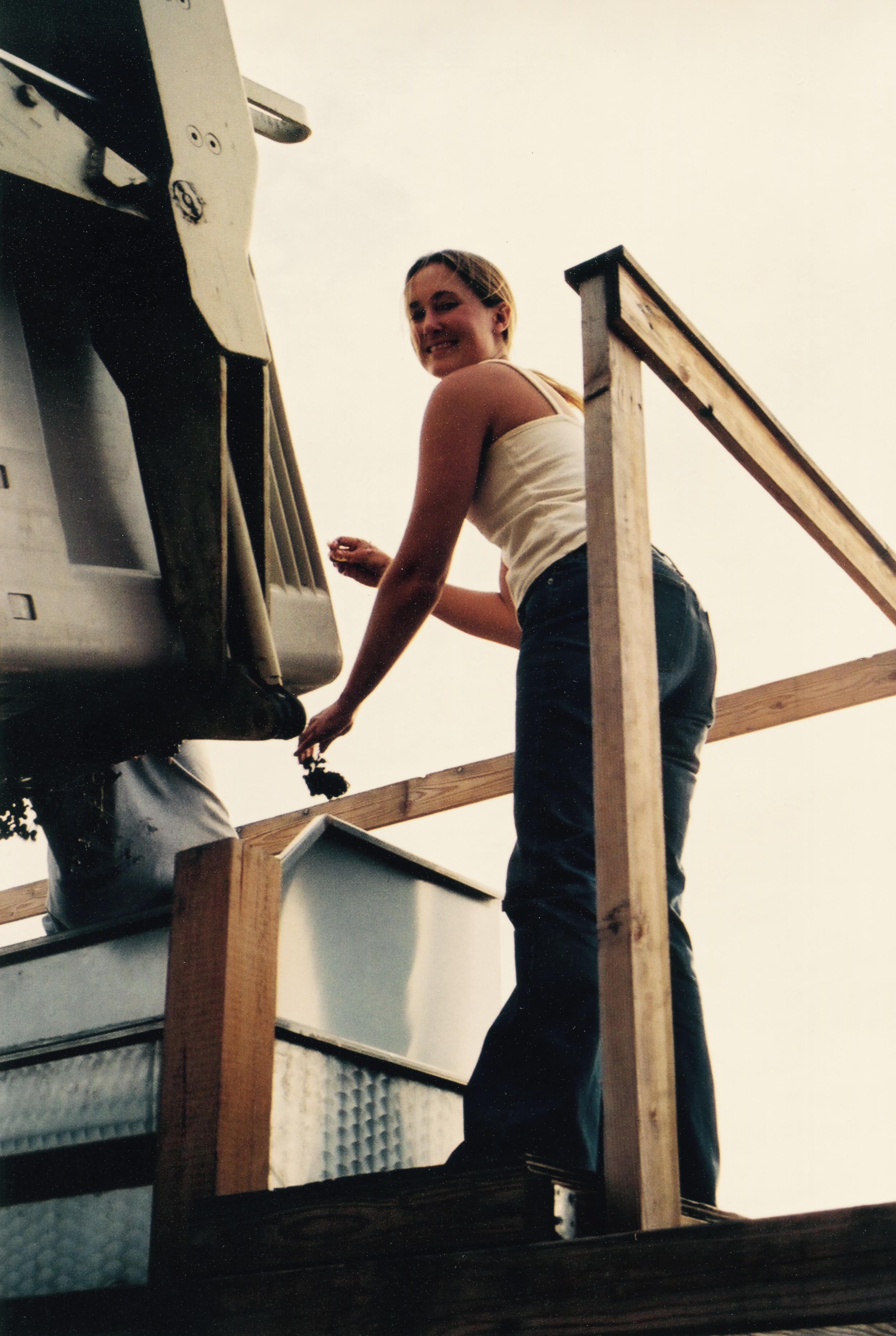 Harvest 2002