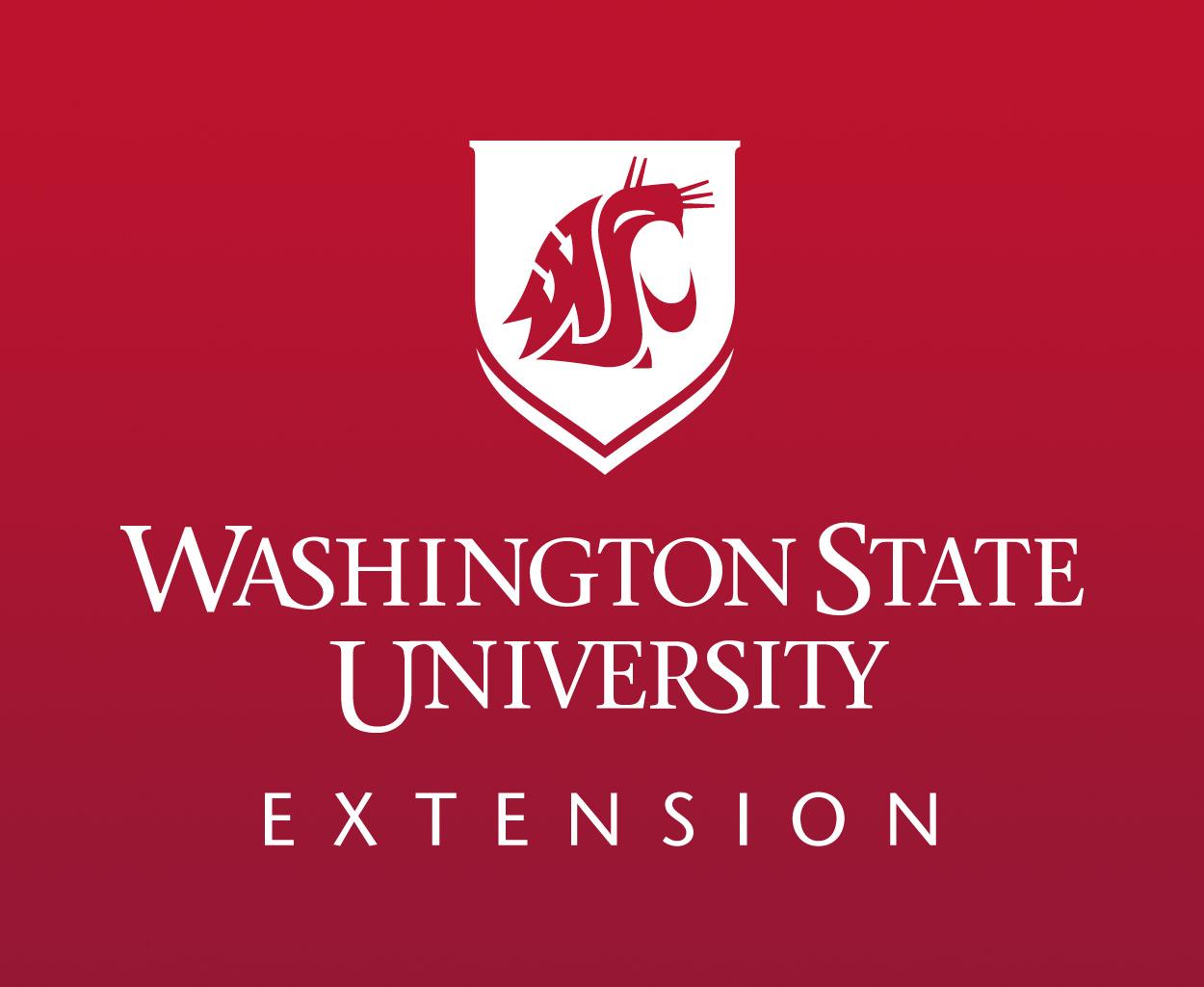 extension-mark.jpg