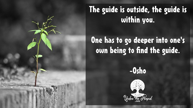 The guide is not outside, the quide is within you- Osho