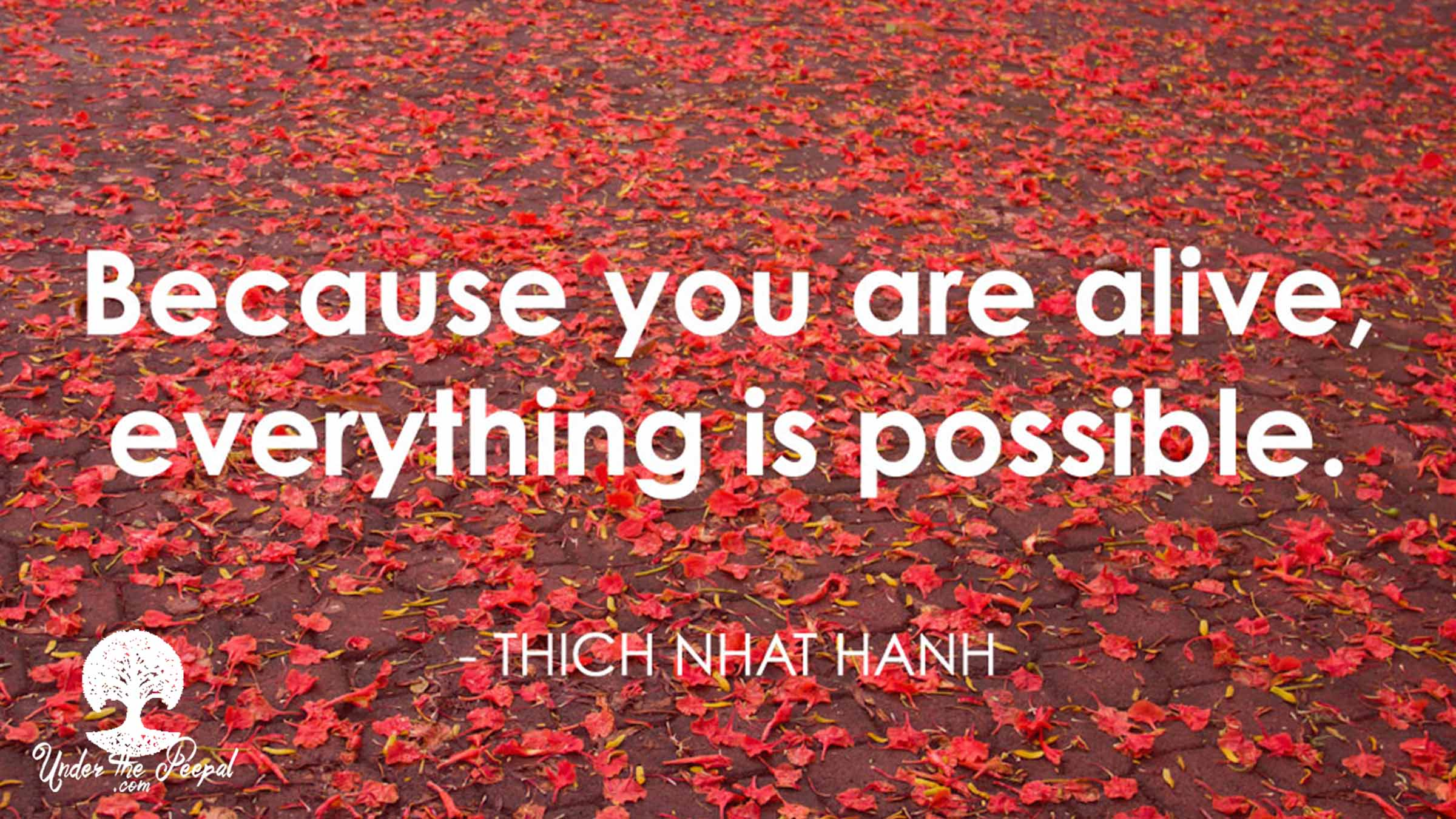 Quote-inspiration-because-you-are-alive-everything-is-possible-thich-nhat-hanh