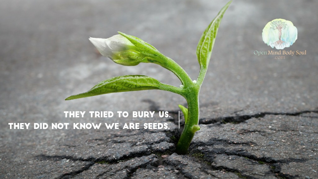 they-tried-bury-us-didn't-know-seeds
