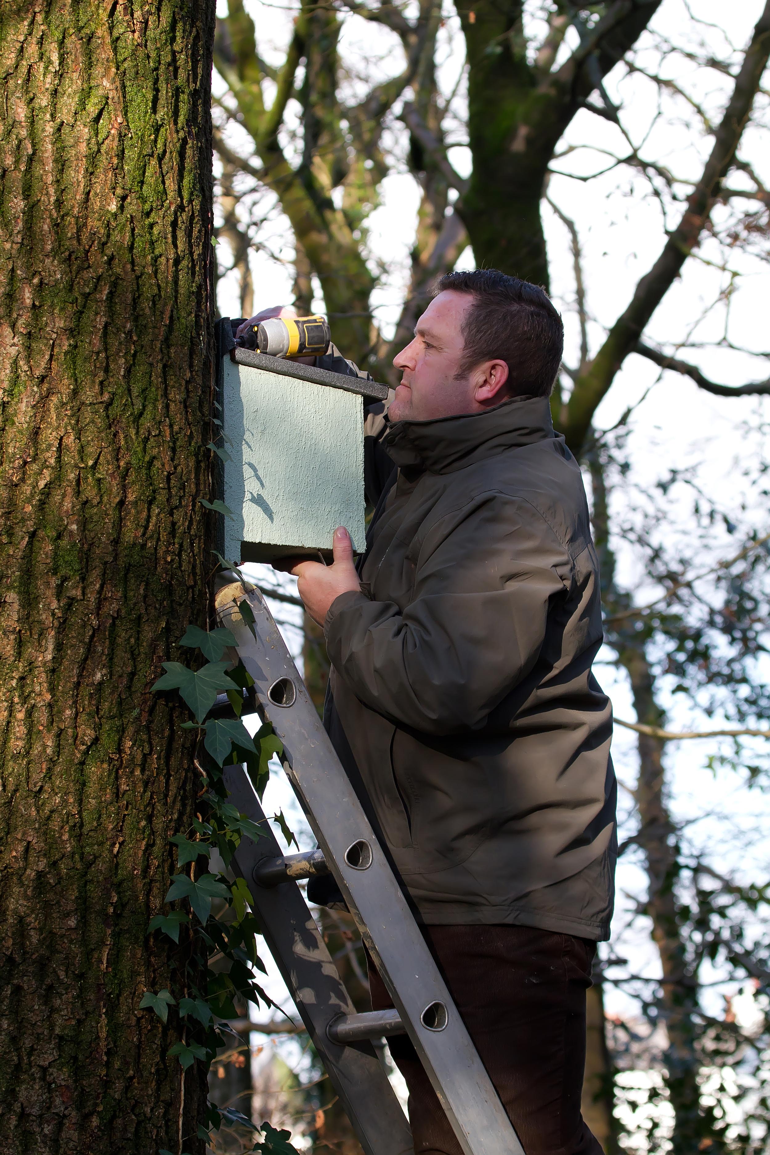 Richard Evans Project Nestbox 16th Jan.jpg