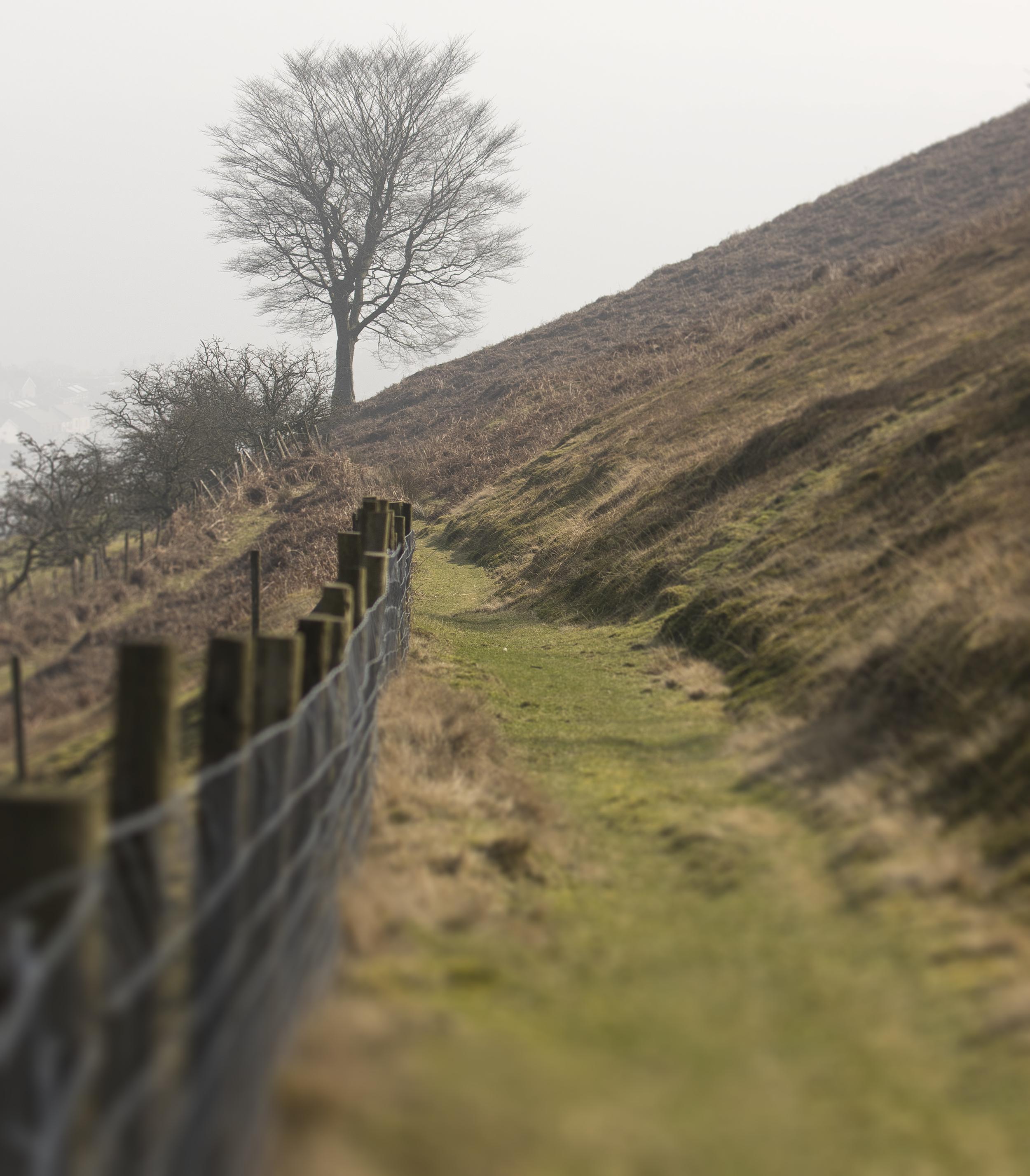 Brittish 19th March.jpg