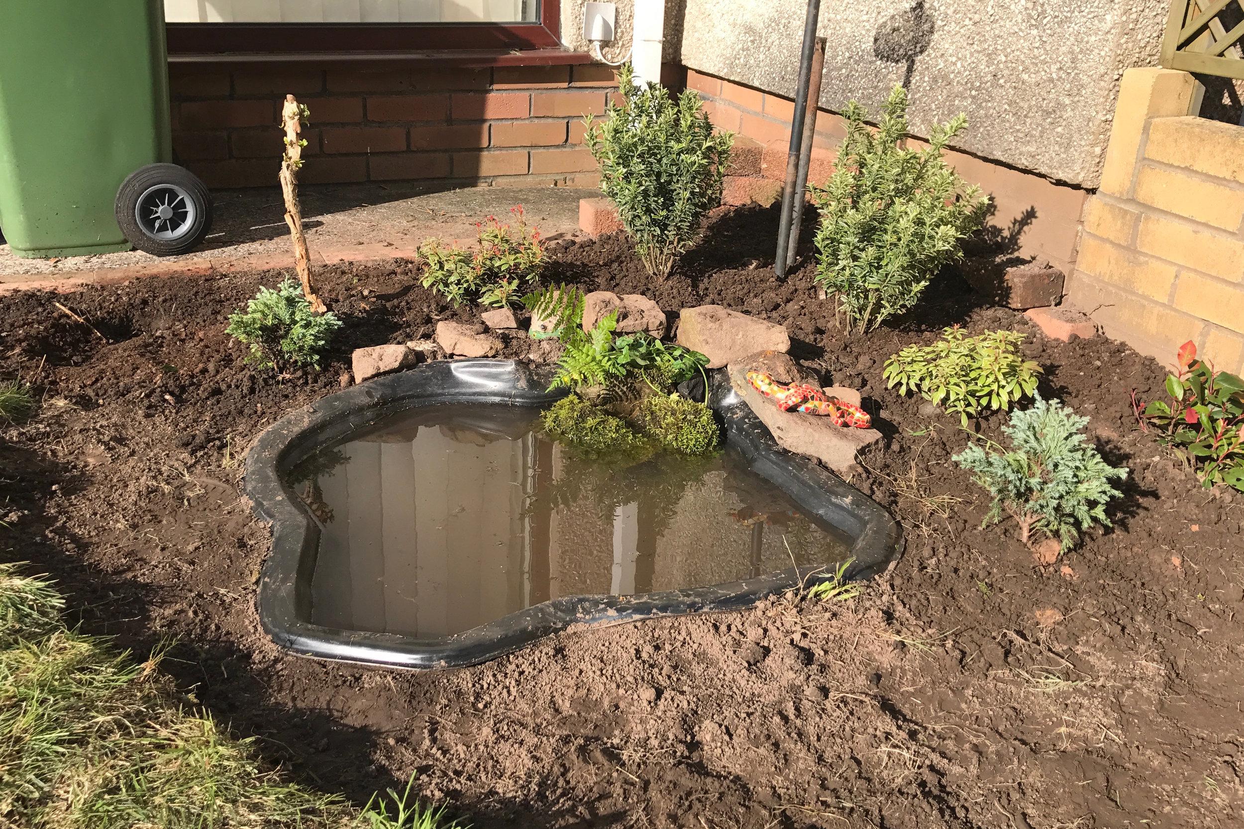 Gard Pond (In Progress)