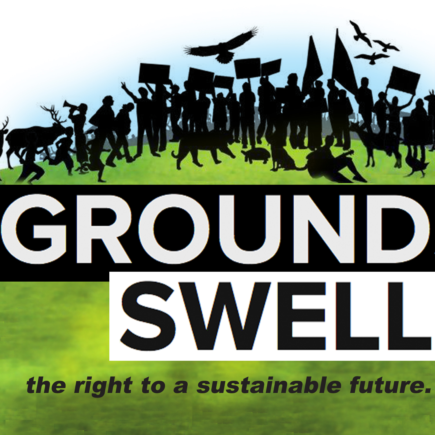 A CITIZEN'S MOVEMENT FOR ENVIRONMENTAL RIGHTS.