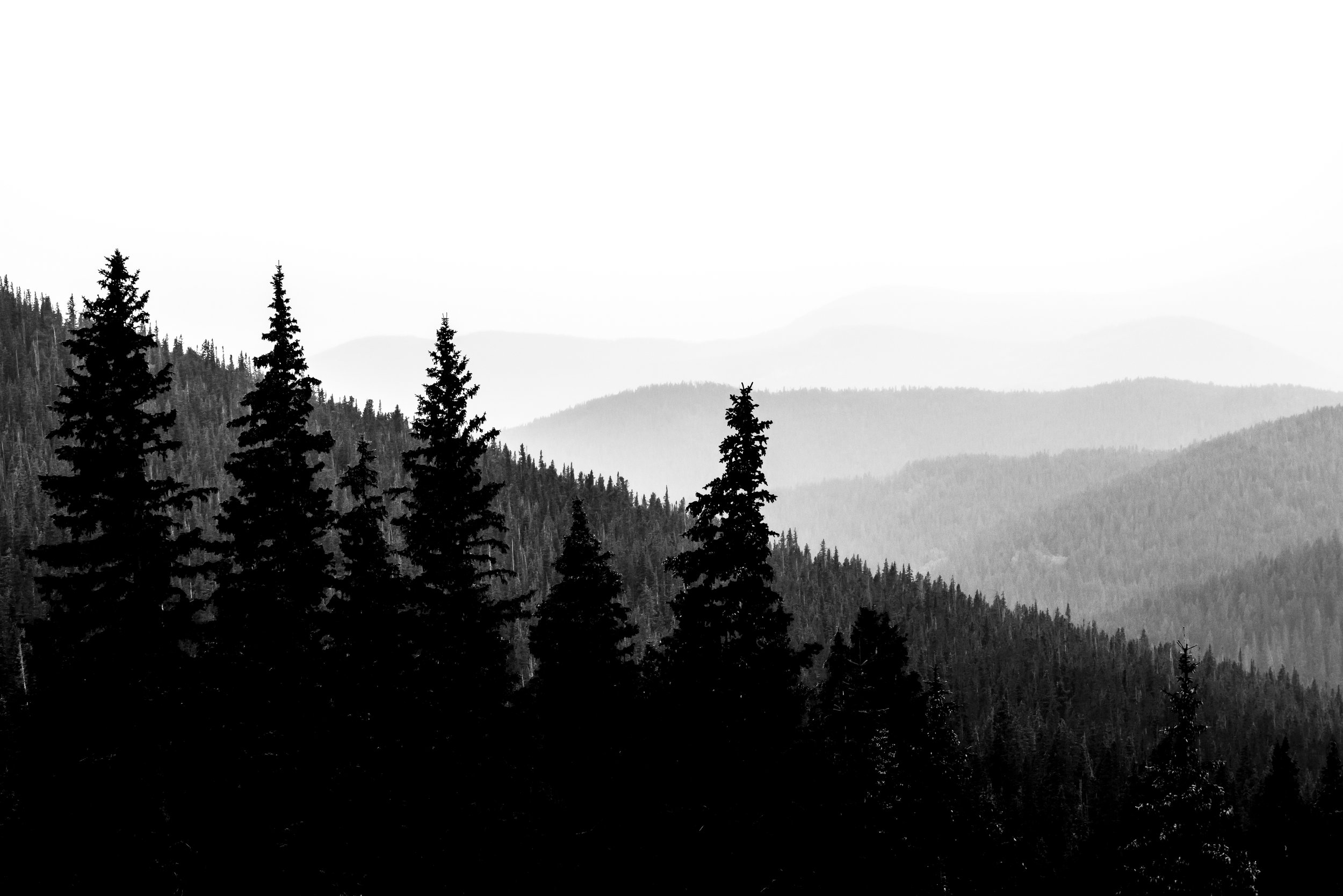 Life is never black and white. This image was shot while out scouting for both a photo shoot and scouting for my 2016 mule deer hunt. A storm was blowing in and I was deep in the hills above Boulder, CO. I was worried about the crap condition of the two track I was driving on but I stopped to get this shot. I don't have many hard rules anymore, but If I see a shot I think I should take, I stop and take it. I won't alway like the shot after editing it but I always regret the shots I didn't stop for.