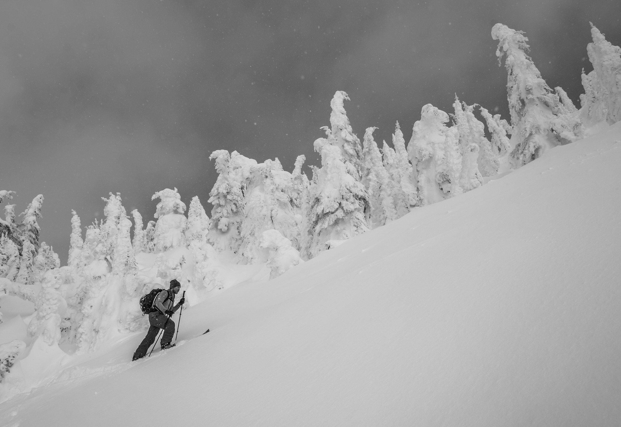 Jeff breaks trail high in the Alpine.