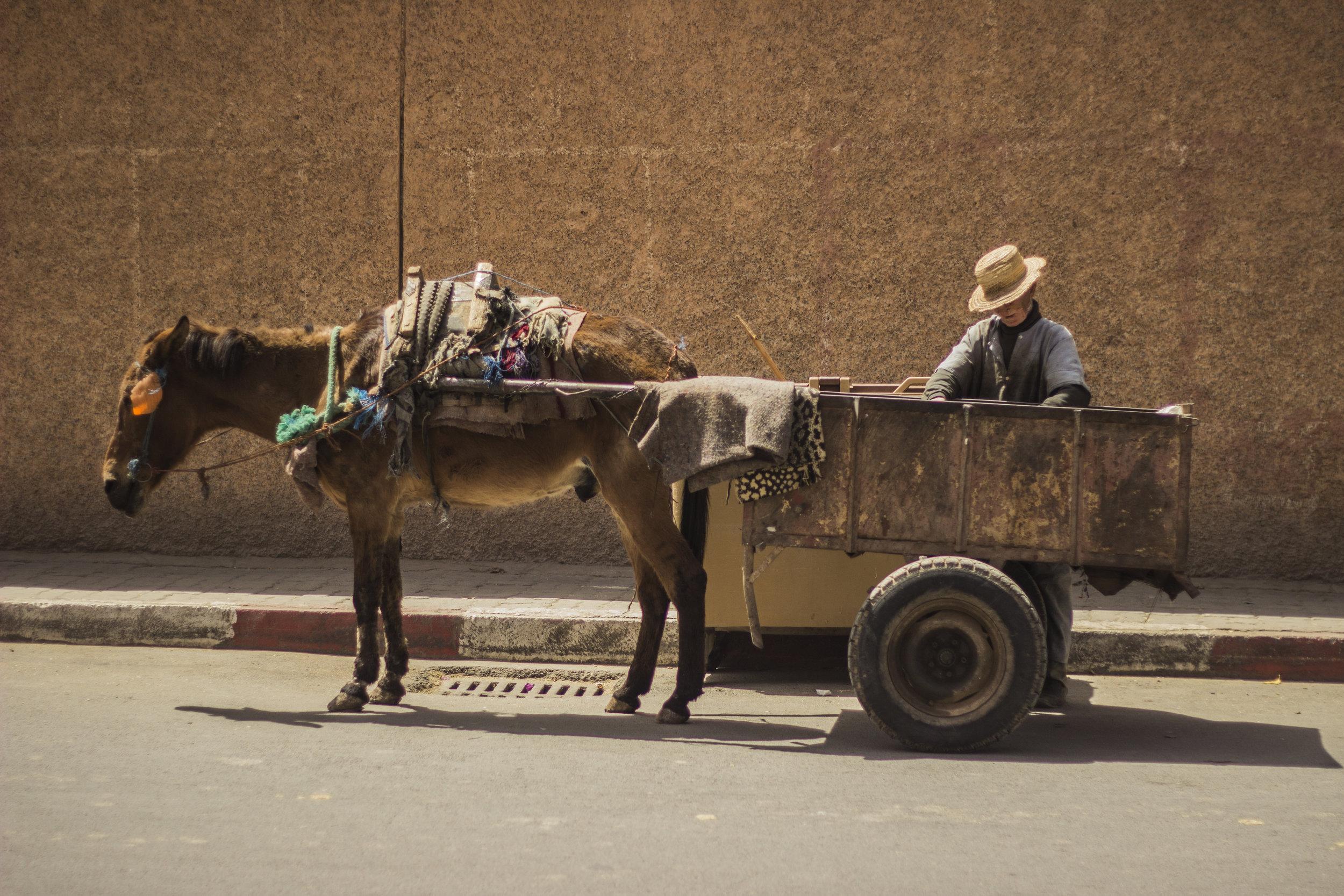 Marrakech Day 1_2.jpg