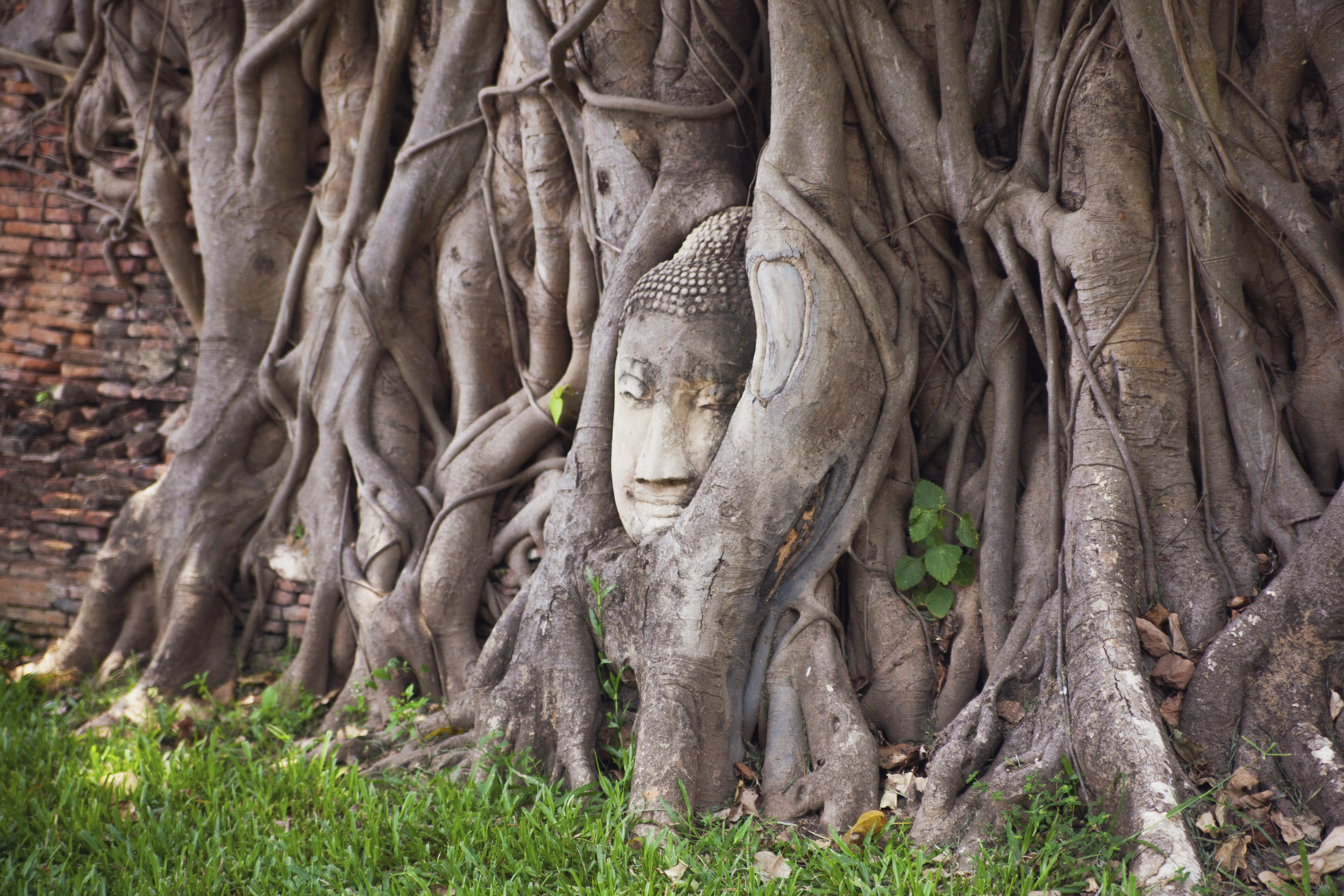 Thailand_234.jpg