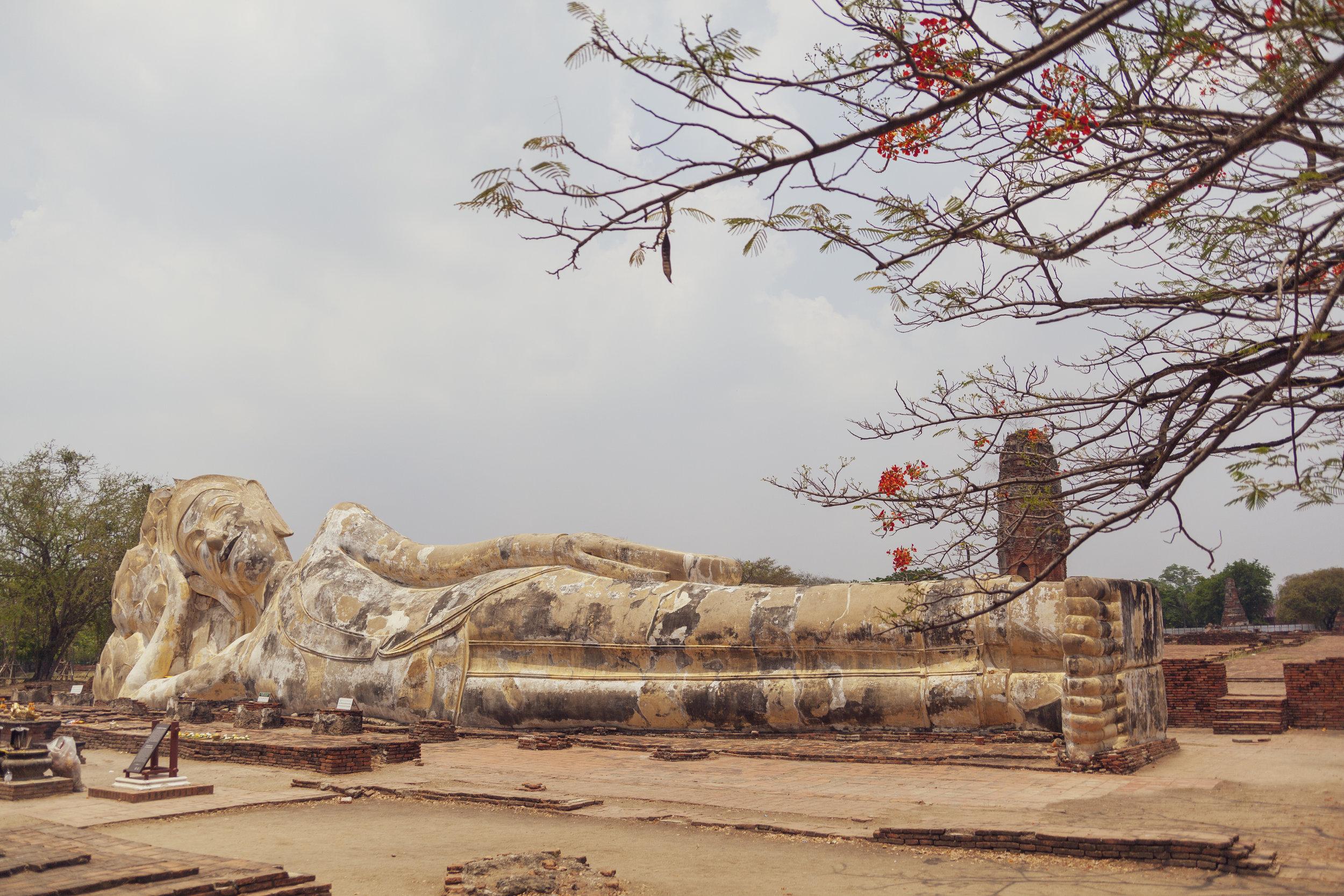 Thailand_252.jpg