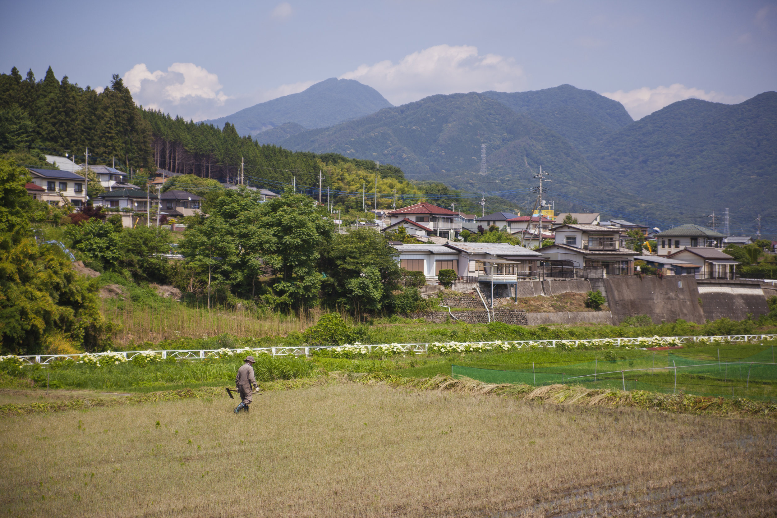 Farms, houses, and mountains in Nakanojo, Japan