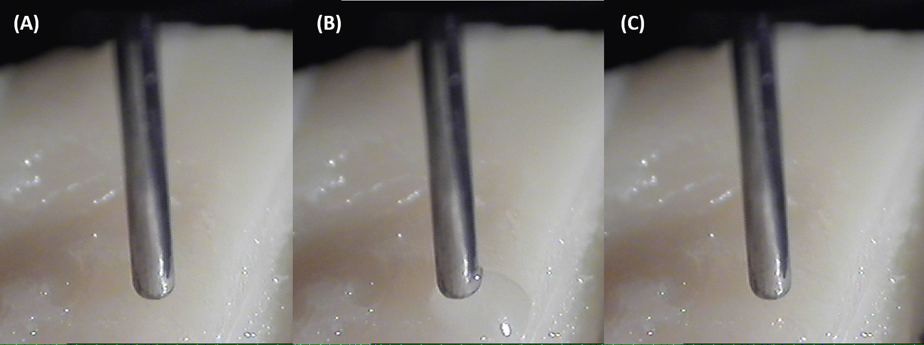 Figure 2.  Examples of quality control photos obtained for every sampling event by the SeqQuant®  droplet Probe: (A) Before droplet disbursement, (B) during surface sampling, and (C) upon retraction of the droplet.