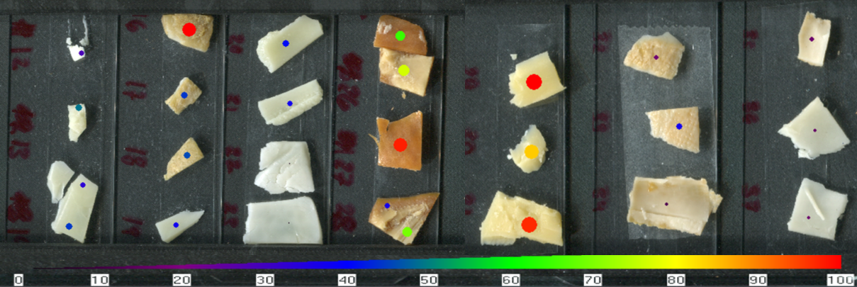 Figure 7.  The heatmap depiction of relative aspartic acid levels in different cheese samples. Aspartic acid has previously been indicated to be one of the amino acids that primarily composes casein proteins (1).