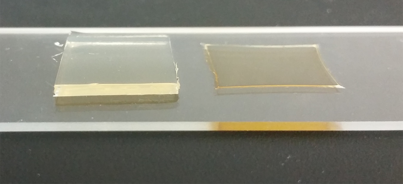 Figure 2.  Agar before (left) and after (right) drying.