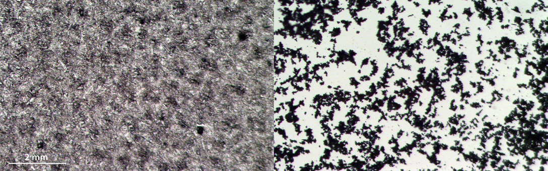 Figure 4.  High resolution image of DHB matrix crystal size and coverage on a glass slide when applied with the HTX TM-Sprayer compared to application via sieve.