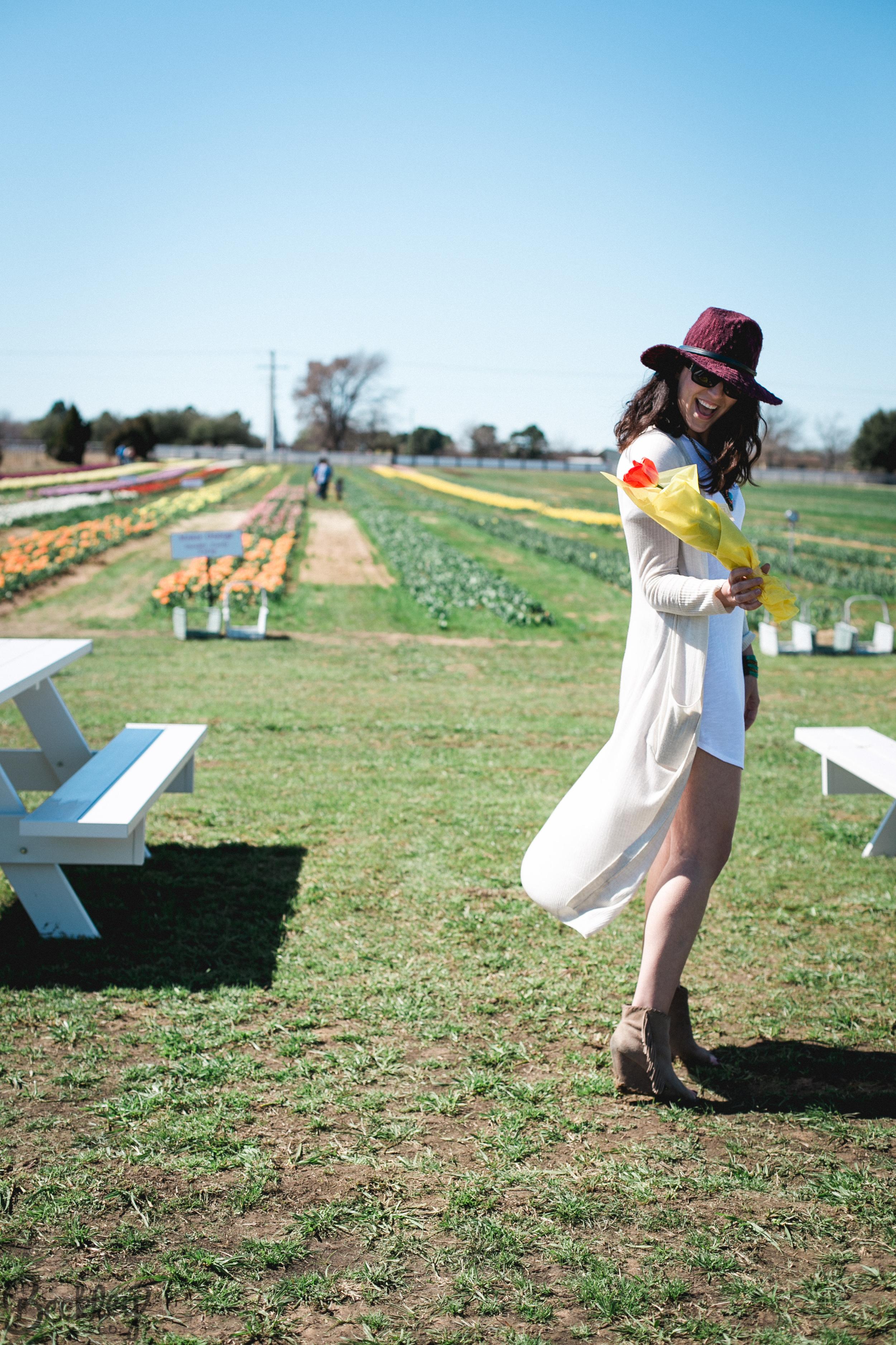 tulips-36.jpg