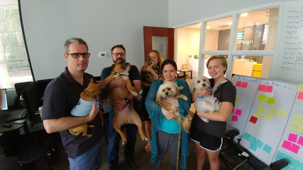 TheeDesign staff and their pets on a recent Pets at Work Day.