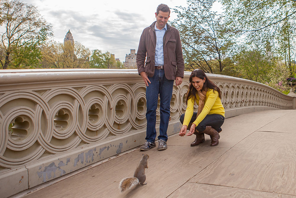 Meeting a squirrel on the Bow Bridge!