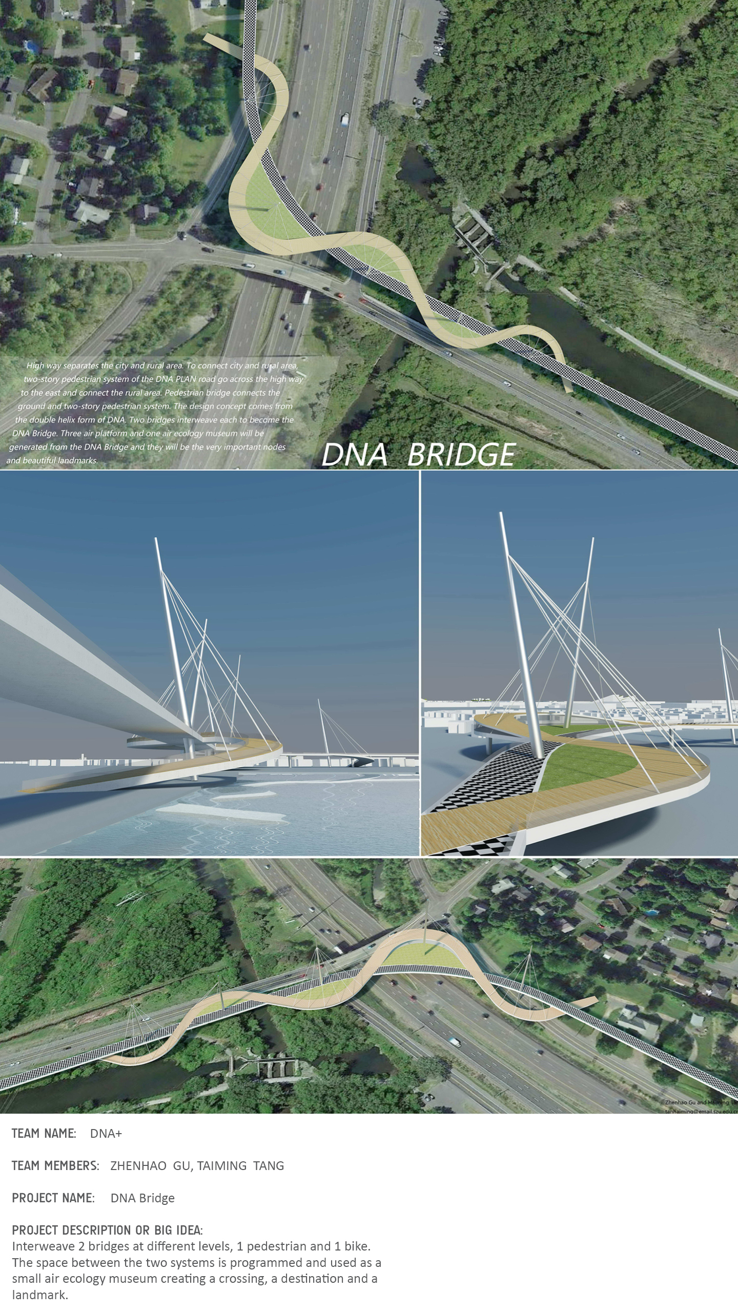 website_Bridge6.jpg