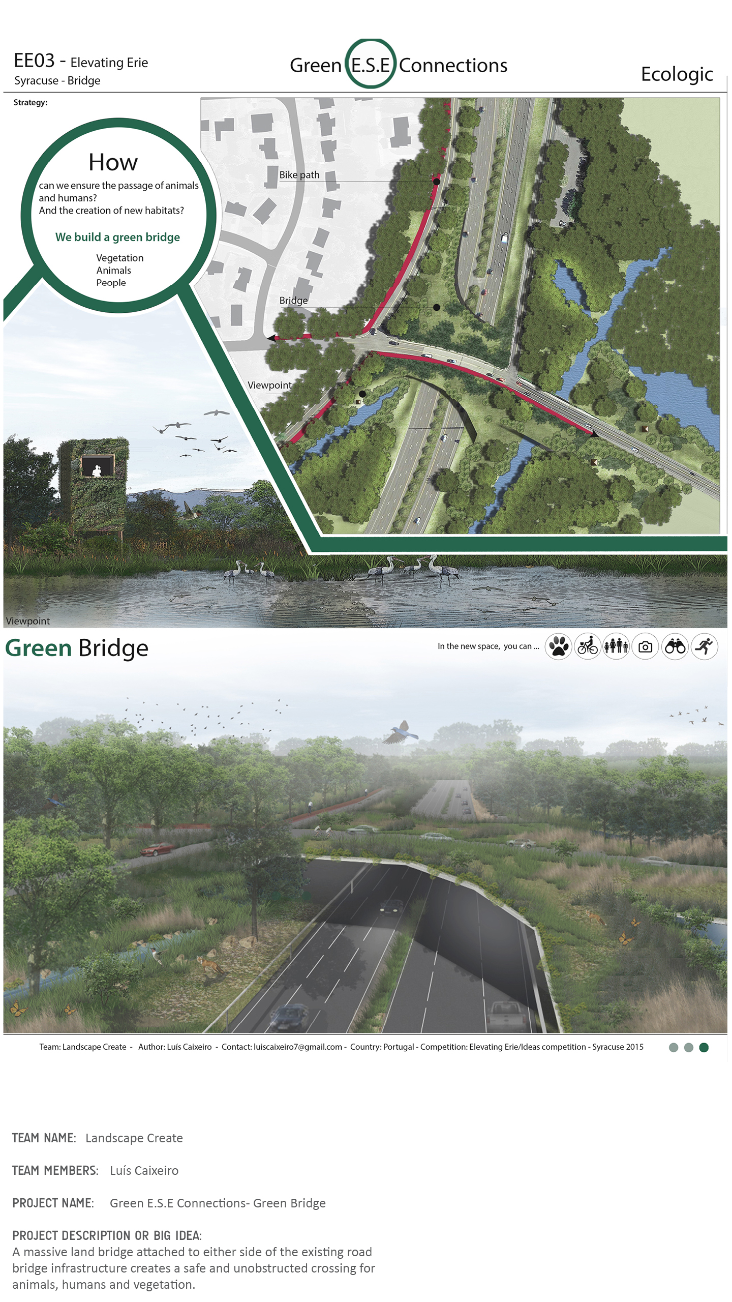 website_Bridge10.jpg