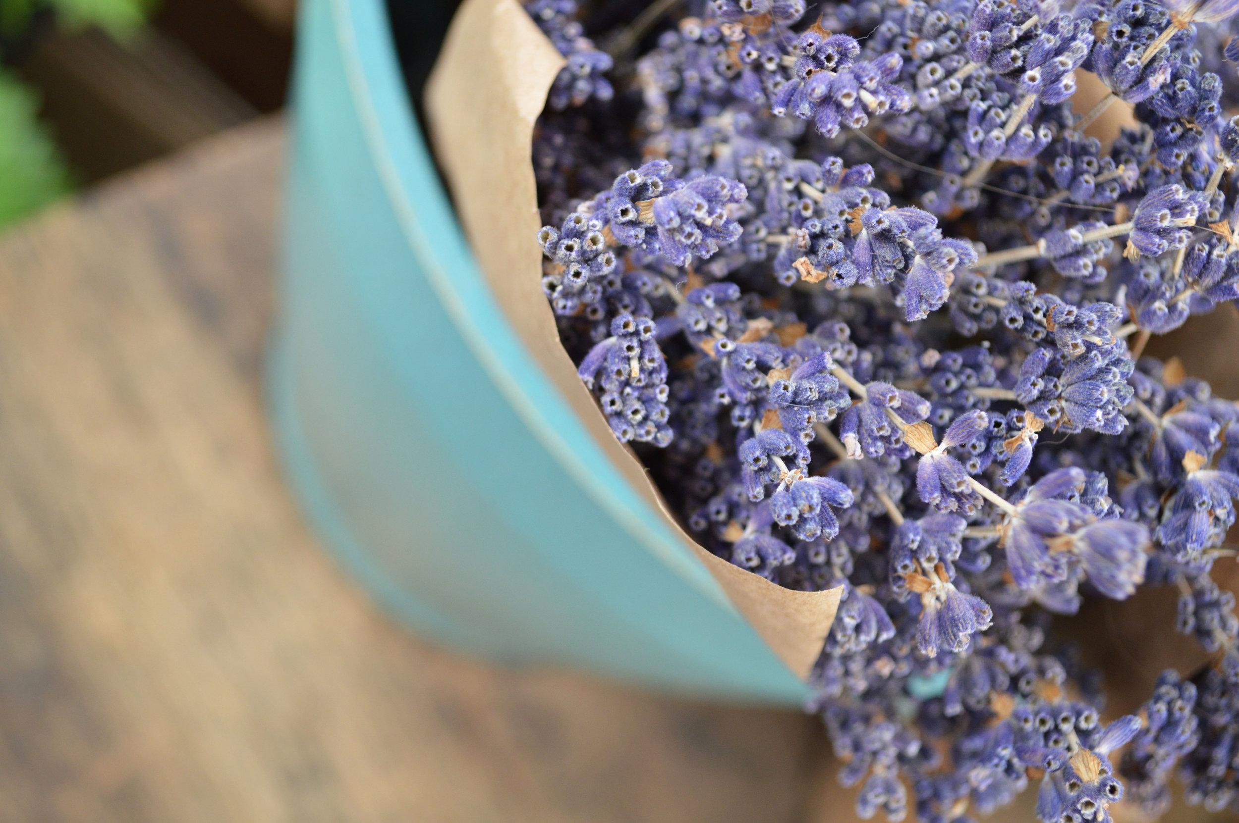 Dried Flowers & Potpourri