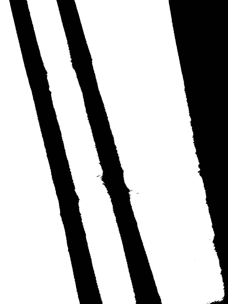 Goodsir-Drawings7.jpg