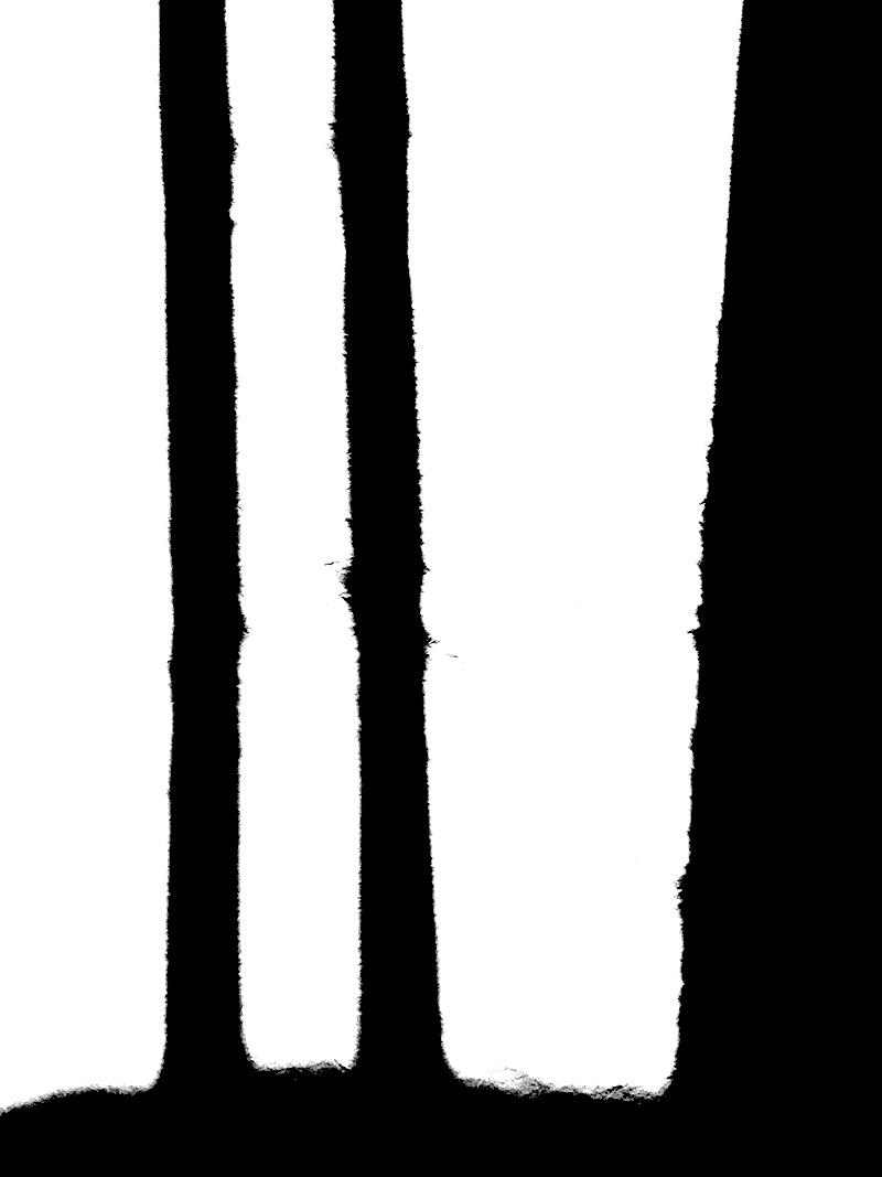 Goodsir-Drawings8.jpg