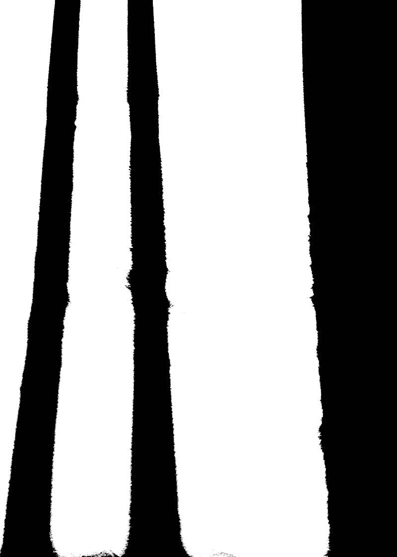 Goodsir-Drawings15 - copie.jpg