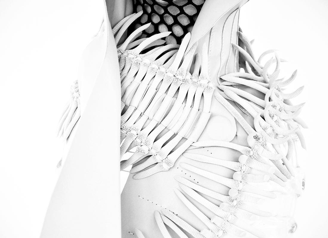 The Bones2.jpg