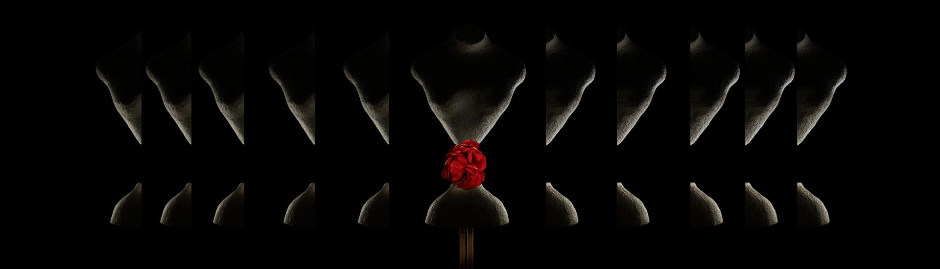 Crillon-Banner-ROSE.jpg