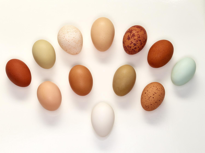 true-cost-farm-heritage-egg-poster.jpg
