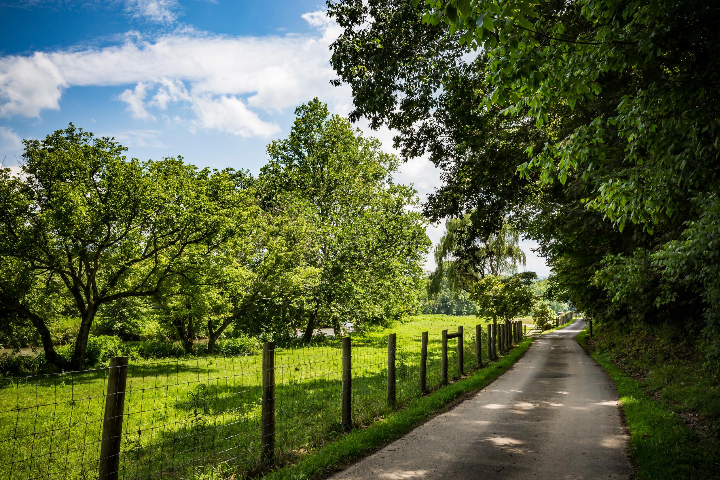 Shallowford Farm-51.jpg