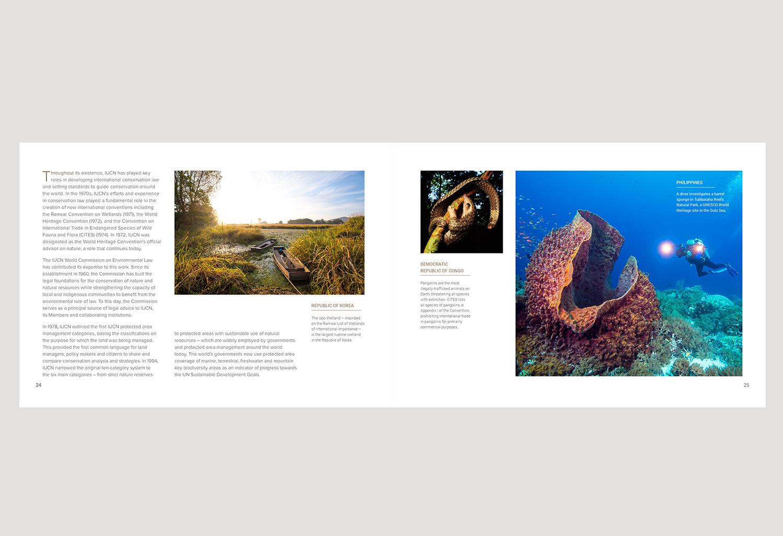 01-PICA-website-IUCN-ENG-24-25.jpg