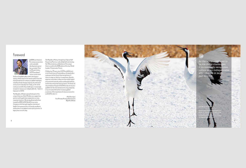 01-PICA-website-IUCN-ENG-P6-7.jpg