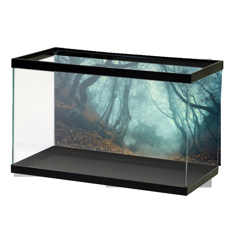 Creepy Forest Background Aquarium Vinyl
