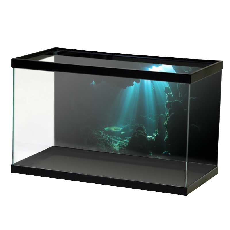 AquariumVinyl_Animation_19.png