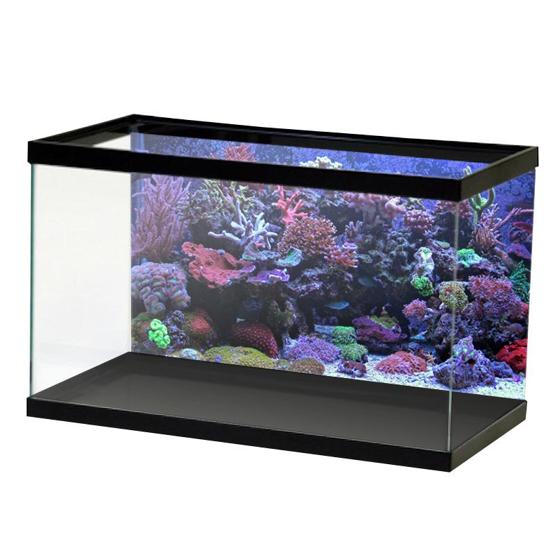 AquariumVinyl_Animation_18.png