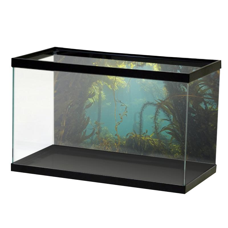 AquariumVinyl_Animation_17.png