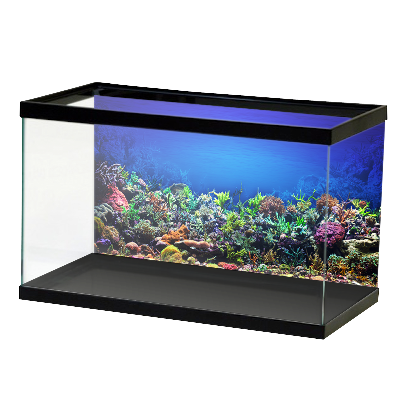 AquariumVinyl_Animation_16.png